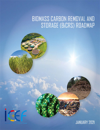 Biomass Carbon Removal and Storage (BiCRS) (Draft)